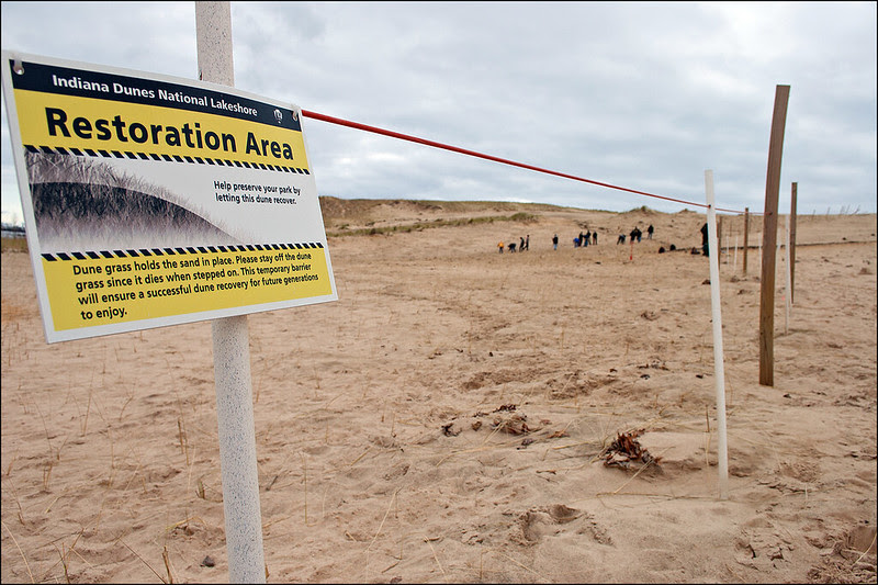 Restoration area