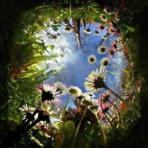 clip image002236 490x490 ASCENSIENIEUWS APRIL   door Fran Tielemans