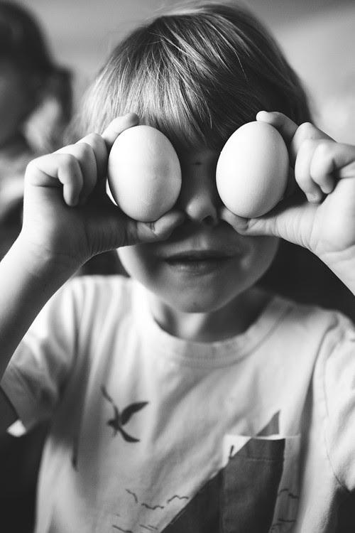 eggs9 copy
