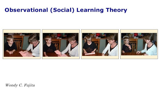 Observational (Social) Learning Theory
