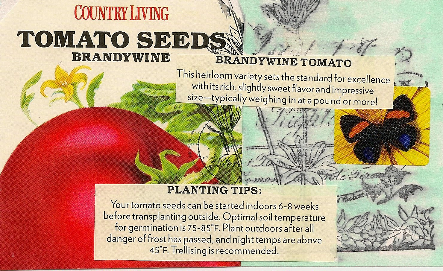 Tomato Seeds ICAD