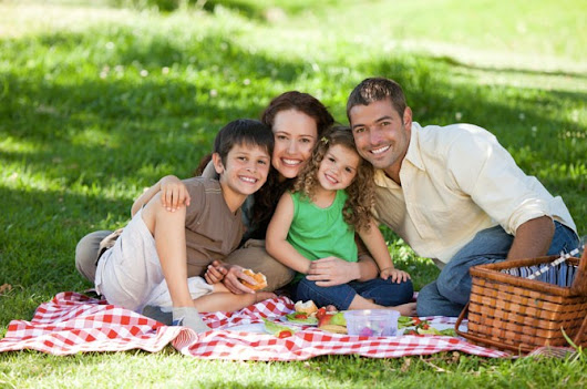 Enjoy A Mosquito-Free Summer With Your Family