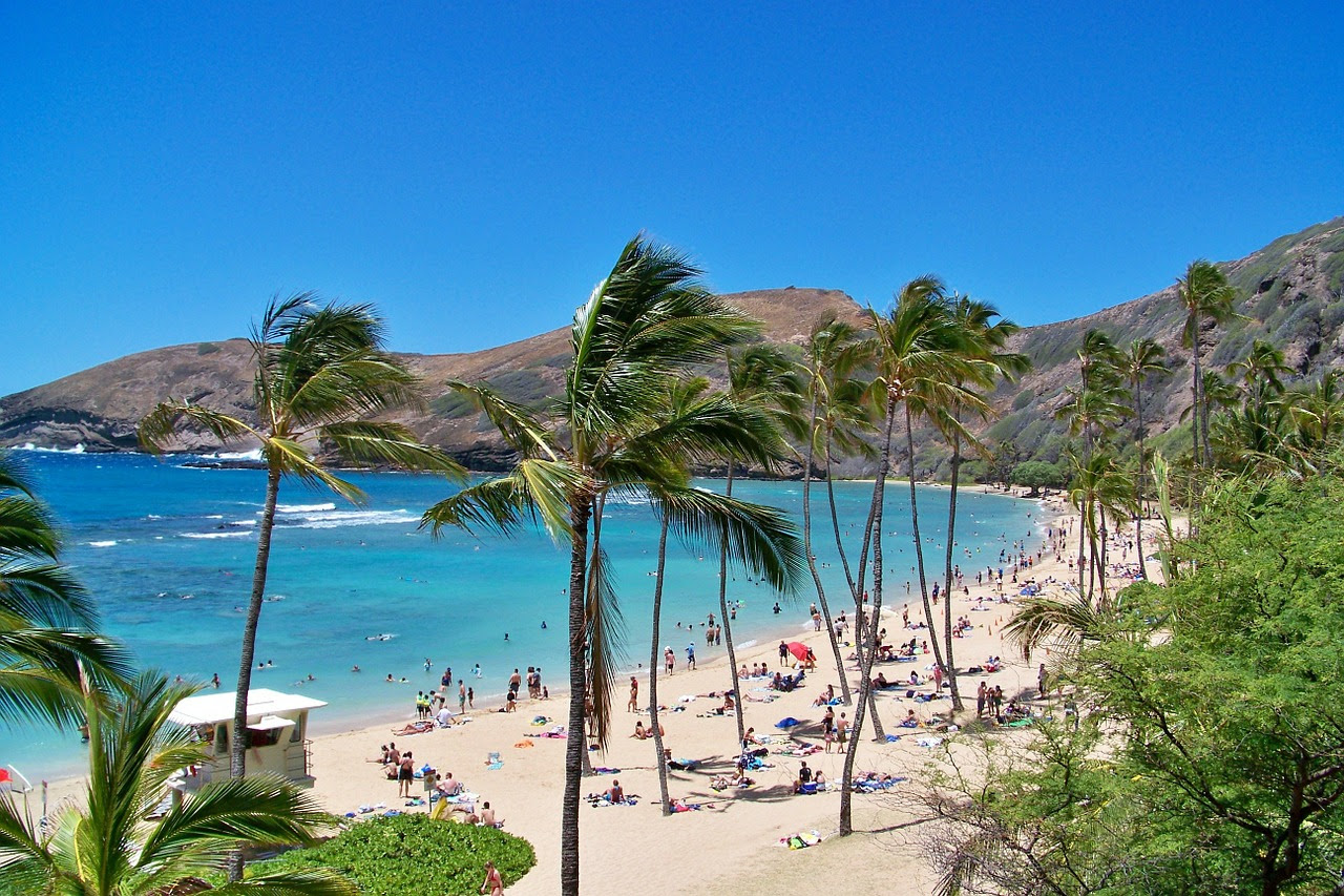 Image result for honolulu hawaii