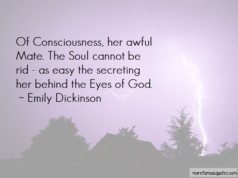 Quotes About Behind The Eyes Top 64 Behind The Eyes Quotes From