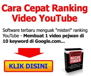 Video Niche Finder
