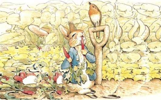 Beatrix Potter letter revealing author's struggle to write Peter Rabbit book goes under the hammer