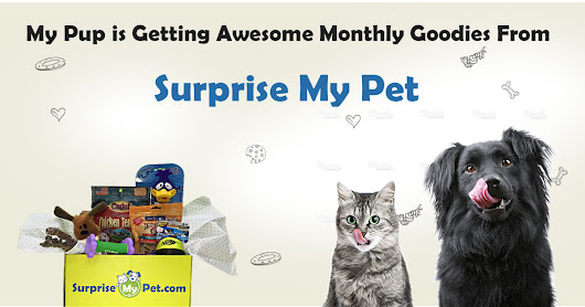 My Pup is Getting AWESOME Monthly Goodies from @SurpriseMyPet