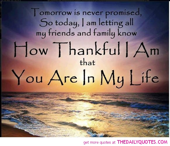 Quotes About Family Friendship 61 Quotes