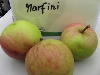 Apfel Marfini Foto Brandt