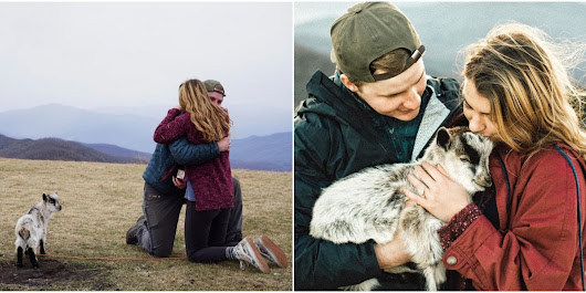 Watch How This Guy Pulled Off An Absolutely Adorable Proposal With a Baby Goat