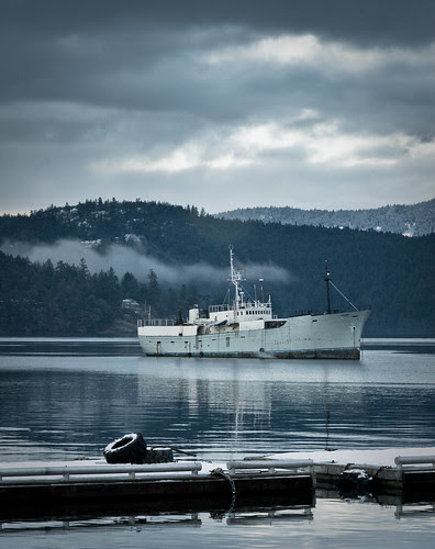 Vancouver Island-5509