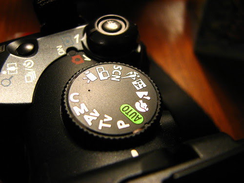 5 Quick Camera Checks Before You Release The Shutter to Produce Amazing Shots Consistently
