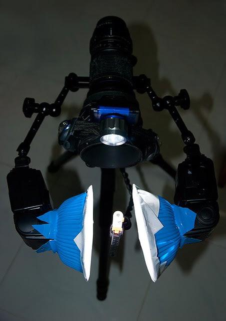 Tamron 180mm with dual SB600