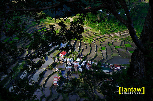 Batad Afternoon Light