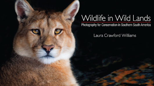 Wildlife in Wild Lands: Photography for Conservation