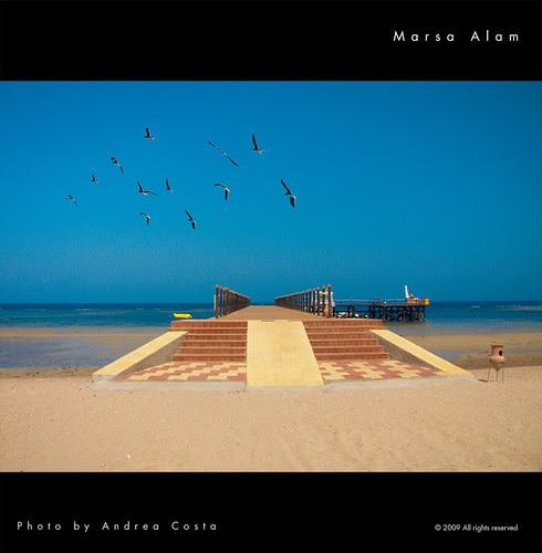 Marsa Alam sea por Andrea Costa Photography