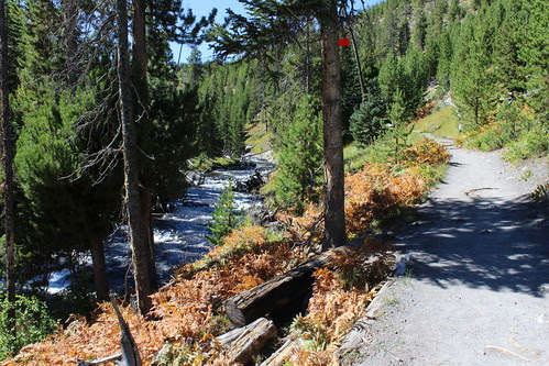 IMG_2084_Trail_to_Mystic_Falls_Yellowstone_NP