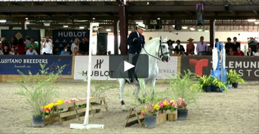 Working Equitation With SPEED – You Have To See It To Believe It! – The Horseaholic