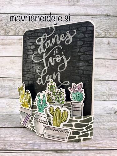 kaktusi - danes je tvoj dan