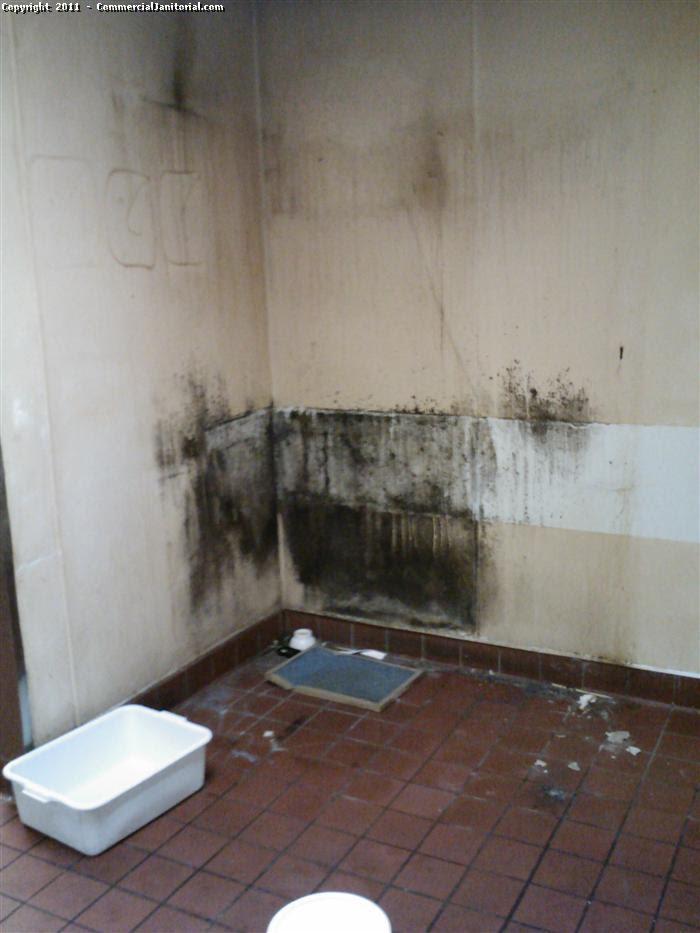 Black Mold Removal - Before image