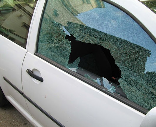 Car Break-Ins: How to Avoid and Protect Yourself from Theft - Grindell and Romero Insurance