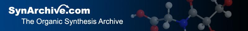 Synarchive logo