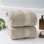 Charisma Soft 100% Hygro Cotton 2-Piece Bath Sheet Set, Light Brown