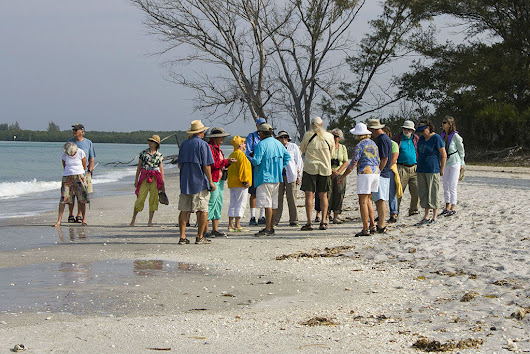Beach and Barrier Island Ecology - Lemon Bay Conservancy