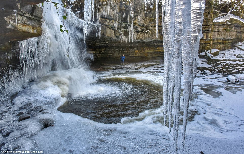 Staying cold: Icicles form aroundSummerhill Force waterfall in County Durham this afternoon as forecasters said the frosty conditions could last all month