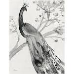 Albena Hristova 'Majestic Peacock' Canvas Art 35x47