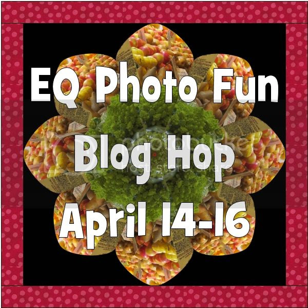 http://funthreads.blogspot.com/2014/02/eq-photo-fun-blog-hop-is-coming.html