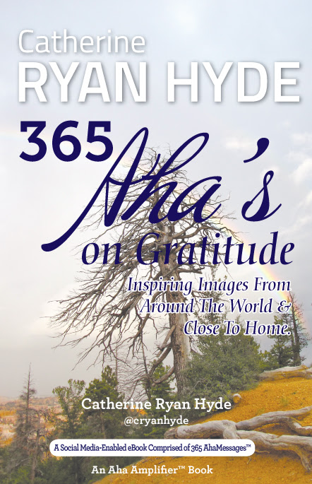 Catherine Ryan Hyde 365 Ahas on Gratitude