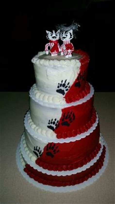 Wisconsin Badgers Cake   Cake Decorating Community   Cakes