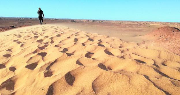 Surcos creados por el viento en las dunas de la provincia de Tinduf, en Argelia, donde se encuentra el campo de refugiados de Smara./MANUEL MADRID