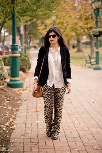 leopard pants.jpg