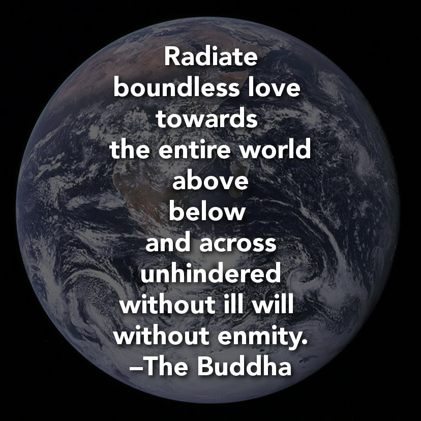 Love Real Buddha Quotes