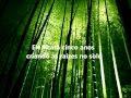 Seja bambum - Motivação