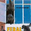 Feral Cities | Chicago Review Press