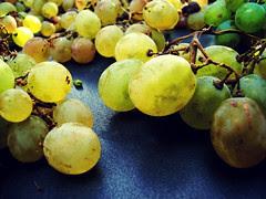 Grapes por ScarecrowPirate