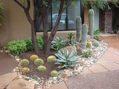Arizona Landscaping on Pinterest