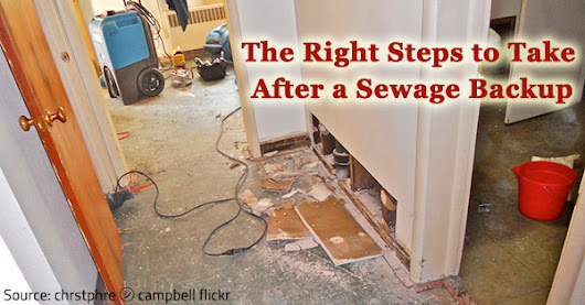 Best Ways to Handle Sewage Cleanup - Sewer Backup: How to Prevent or Cleanup