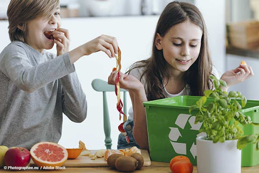 Equipping the Next Generation to Reduce Food Waste