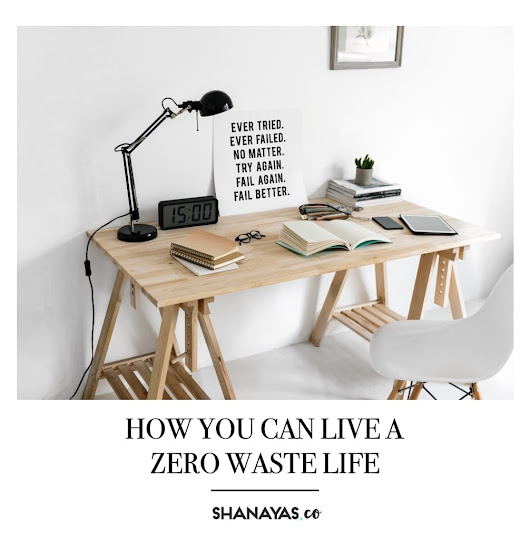 This is How You Can Live a Zero Waste Life - Shanaya S