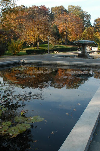 Lily Pool Terrace