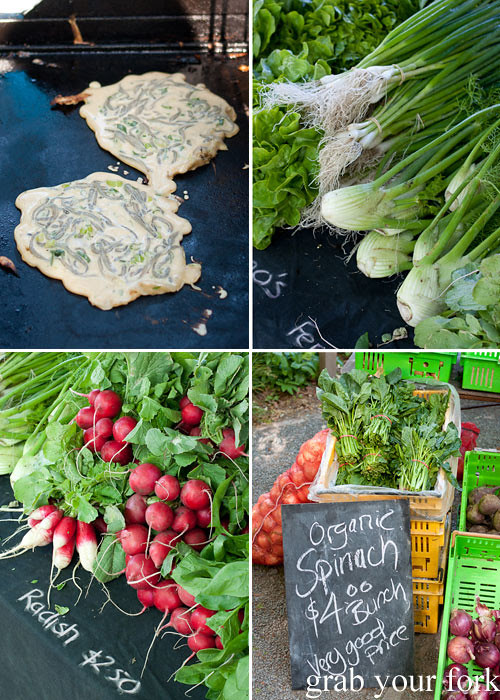 whitebait fritters fennel organic spinach radishes at christchurch farmers market canterbury