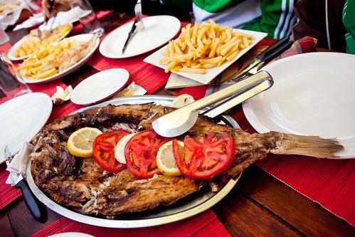 fish and tomato
