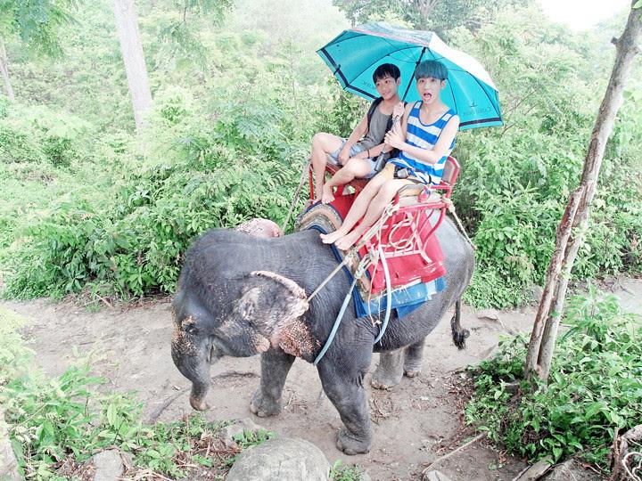 phuket elephant riding typicalben 8