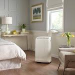 De'Longhi Pinguino 400 sq ft 3 in 1: Air Conditioner, Dehumidifier, Fan