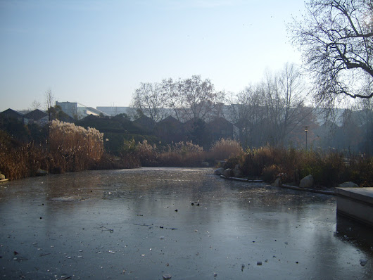 A cold winter morning in Parc de Bercy in Paris
