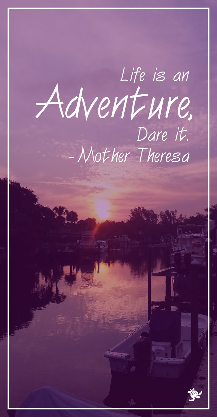 Mother Theresa Adventure Quote